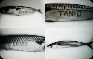 A travers la symbolique de 4 poissons plus vraiment comestibles, sont représentés des milliers de km de cotes de France et d'aillleurs, souillées par une pollution humaine et subie. A ce quadryptique on aurait pu ajouter 2010, explosion de la plateforme du DeepWater Horizon et ses conséquences environnementales et sociales